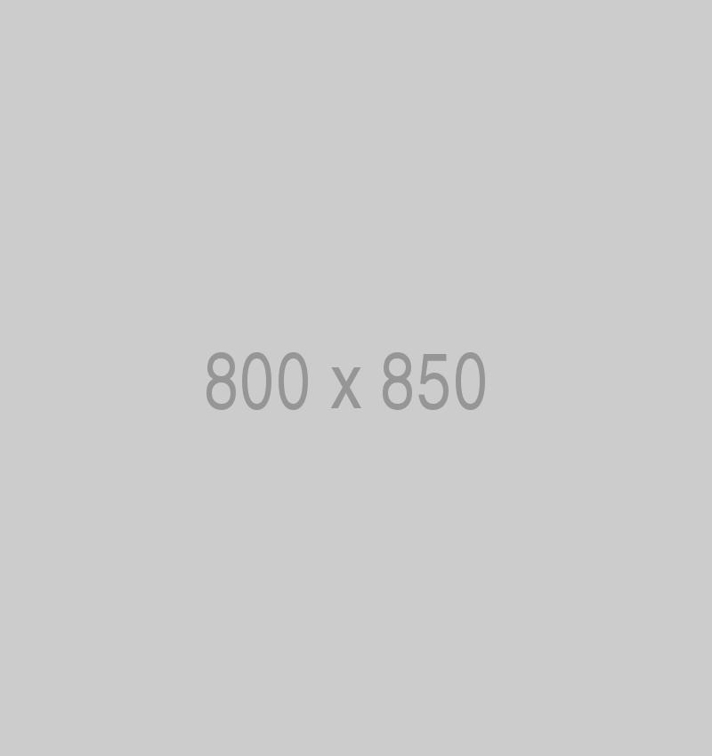 800x850